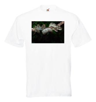 Madagaskarboa T-Shirt, weiß (Acrantophis madagascariensis)
